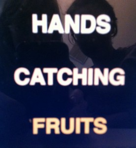 Hands catching fruits, 2013